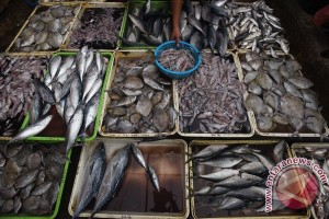Pasokan ikan berkurang akibat cuaca buruk