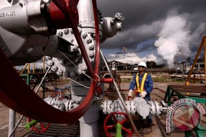 DPR dan pemerintah dukung energi panas bumi