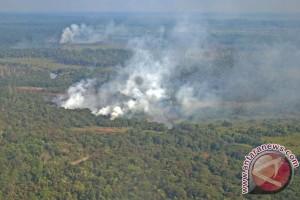 Paskhas TNI musnahkan barak pembakar lahan di Taman Nasional Tesso Nilo