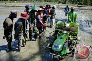 Indonesia kirim ahli pertanian ke Afrika