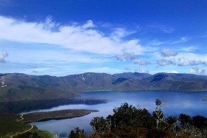 Arfak mountain residents rely on herbal medicine