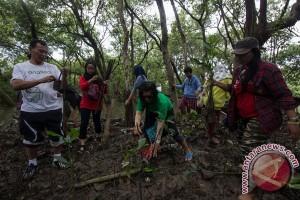Pengembangan hutan mangrove pesisir Bantul terkendala sampah