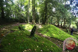 Kebun Raya Cibodas tambah koleksi taman tematik