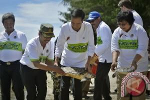 Presiden Lepas Penyu Sisik