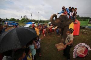 """Siskamling"" gajah di Way Kambas"