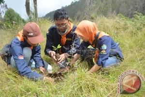 230.000 bibit akan ditanam pada Hari Menanam Pohon