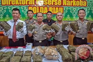 Polisi Amankan 30 Kg Ganja Kering