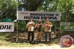 Bridgestone lanjutkan donasi untuk dua orangutan di Samboja