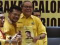 Syahrul Yasin Limpo Daftar Caketum Golkar
