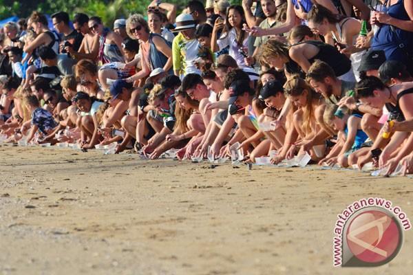 200 tukik dilepas di pantai masceti-Gianyar