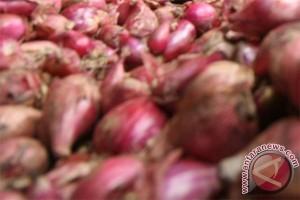 Bulog gelontorkan 1.000 ton bawang ke pasar