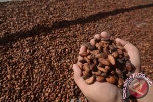 Sulteng minta dukungan Kementan kembangkan kakao