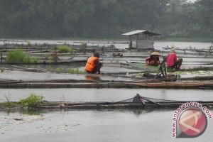 Keberadaan keramba ikan Danau Toba dikaji ulang