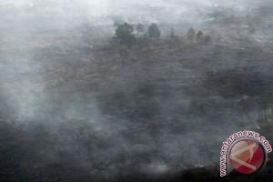 DPR minta Kapolri jelaskan SP3 kasus kebakaran hutan
