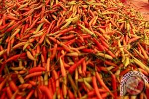 Cabai super dijual Rp120.000/kg di pasar murah