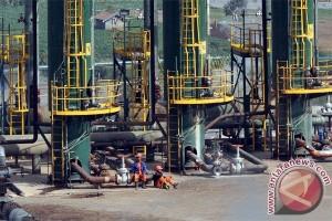 """""""Lampu hijau"""" untuk geothermal di kawasan konservasi"""