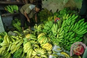 Banten tunggu DKI bangun pusat distribusi agribisnis