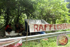 Kongres Kehutanan Indonesia digelar akhir 2016