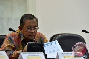 Darmin: Asumsi pertumbuhan tergantung realisasi amnesti pajak