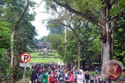Kebun Raya Bogor bersiap peringati genap dua abad