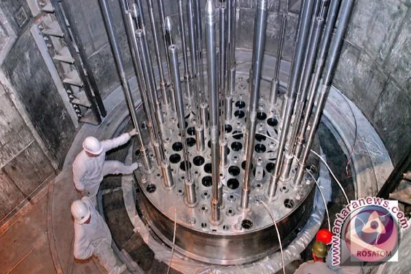 Ahli nuklir bahas standar efek radiasi