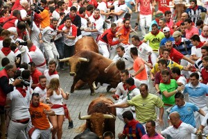 Ribuan orang protes adu banteng Spanyol