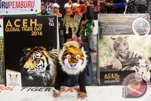 WWF Indonesia ingin masyarakat kota peduli harimau