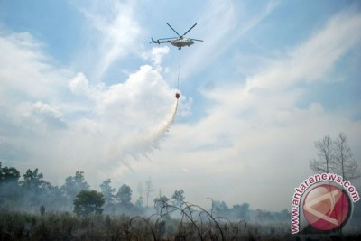 All-out fight against forest fires in Sumatra, Kalimantan