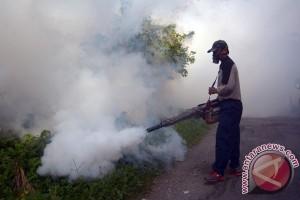Dinkes ingatkan warga jaga sanitasi antisipasi DBD