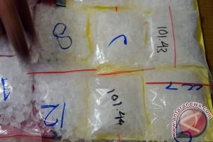 BNN langkat musnahkan sabu-sabu 11,28 gram