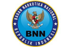 BNN waspadai peredaran narkoba dalam bentuk permen