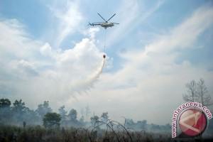 Dua helikopter pemadam kebakaran Riau geser ke Kalimantan