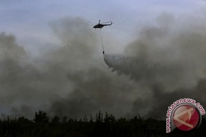 Kebakaran hutan di Ogan Ilir belum padam