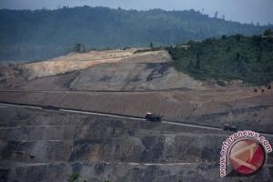 Perusahaan Jerman cari mitra lokal kembangkan gasifikasi batubara