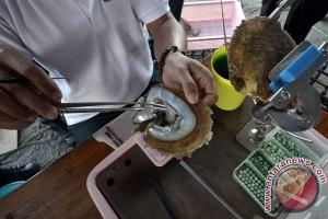 Pakar: tren mutiara Indonesia didorong dari luar