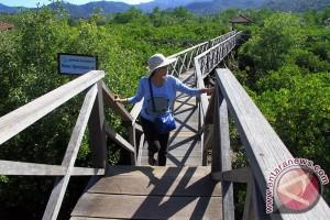 Lima hektare tanaman bakau mati di Pariaman