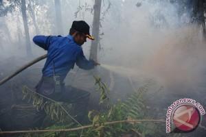 Pembakaran Lahan Di Pontianak