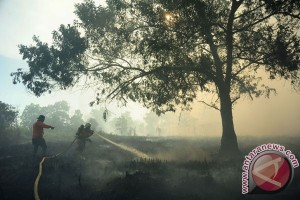 Kabut asap selimuti Martapura Kalsel