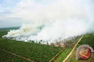 Peningkatan Titik Api Di Kalbar