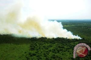 TNI dan polisi kesulitan padamkan kebakaran lahan gambut