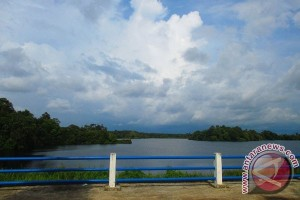 Upaya Pemkab Mukomuko ganti pohon mati di Danau Nibung