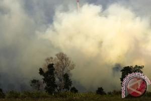 Tujuh titik panas masih terdeteksi di Riau