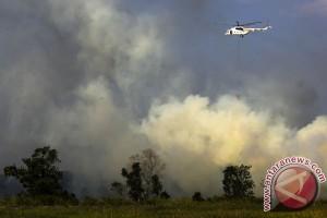 Waktunya antisipasi kebakaran hutan dan lahan
