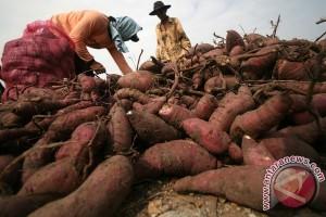 Indonesia bisa hadapi jebakan pangan