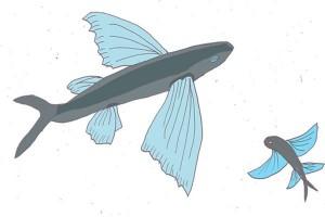 Antara doeloe: Ajal datang setelah makan ikan bersayap
