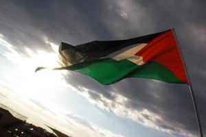 DPD pastikan Indonesia tanggapi emosional penindasan Palestina