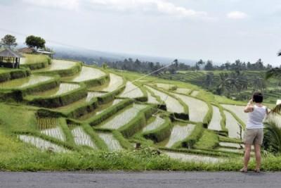 Bali adjudged best island for 12th successive year
