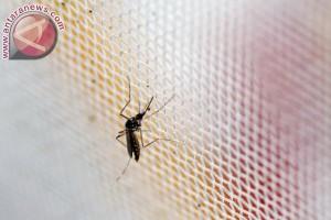 Vietnam soroti dua pasien terinfeksi Zika