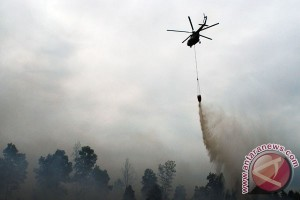 EARTH WIRE -- Two additional helicopters needed to anticipate Riau`s forest fires: Nurendi