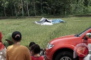 Pesawat latih jatuh di persawahan Cilacap